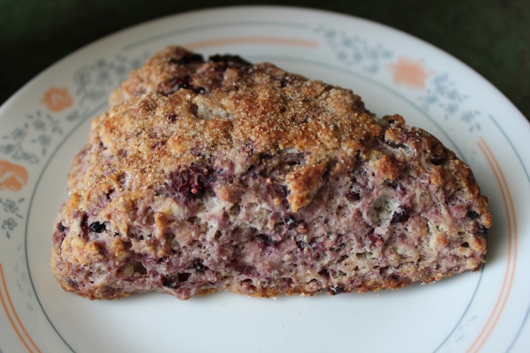 Blackberry Ricotta Whole Wheat Scones